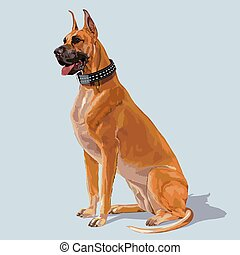 Boxer Dog Sitting