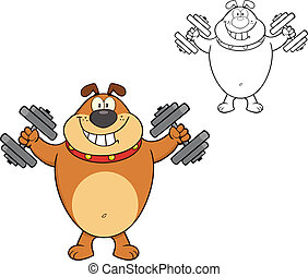 Brown Bulldog With Dumbbells