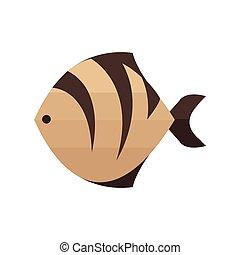 Brown Tiger fish