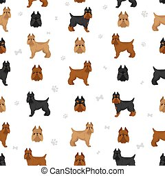 Brussels griffon seamless pattern. Different coat colors and poses set.  Vector illustration
