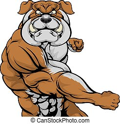 Bulldog attacking
