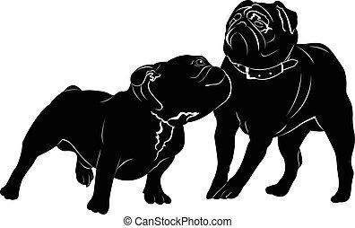Bulldog breed dog. pug. Bulldog