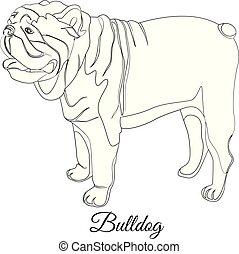 Bulldog cartoon dog coloring. Outline