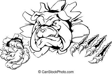 Bulldog claw breakthrough