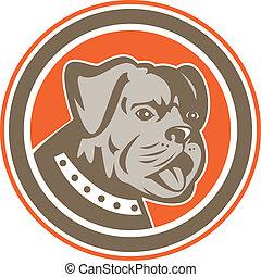Bulldog Dog Mongrel Head Mascot Circle