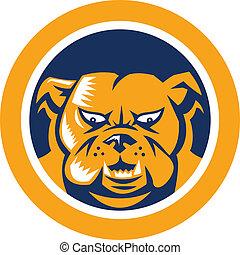 Bulldog Mongrel Dog Head Circle