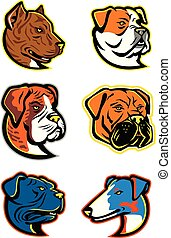 Bulldogs and Terriers Mascot Dog Collection