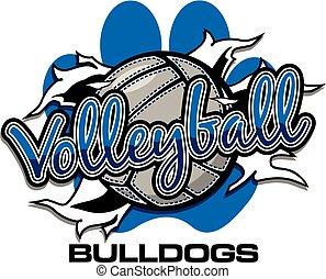 bulldogs volleyball