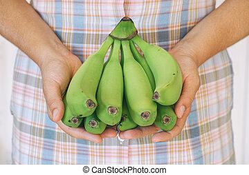 Bunch of green organic bananas in hands