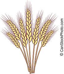 bunch of vector wheat ears