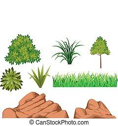 bush and rock