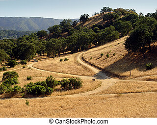 California hills at summer