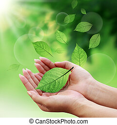 Care leaves with your hands in the world on nature