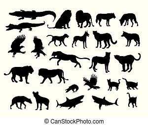 Carnivora Animal Silhouettes