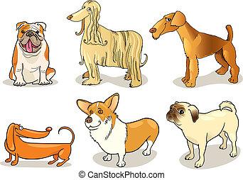 cartoon illustration of six purebred dogs