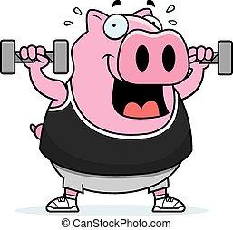 Cartoon Pig Dumbbells