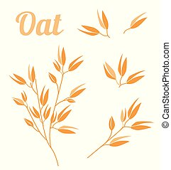 Cereal plants, agriculture industry organic crop products for oat groats flakes, oatmeal packaging design.