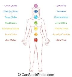 Chakras Woman Description Meanings Meditation Standing