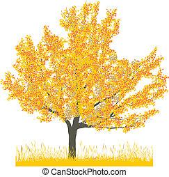 Vector illustration of cherry tree in autumn