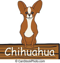 Chihuahua cartoon dog icon