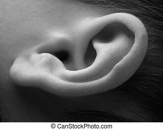 Close-up of child ear in black and white