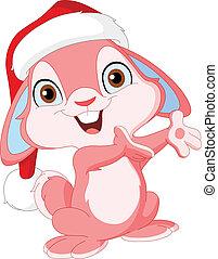 Christmas cute bunny