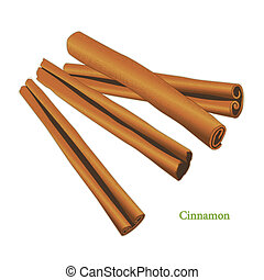 Cinnamon, classic spice from the bark of tropical Asian trees, flavorful, aromatic for cooking, baking and medicinal uses. See other herbs and spices in this series.