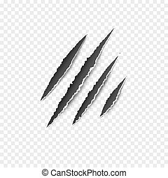 Claws paw scratches isolated vector on transparent background. Animal Claws horror scratch tiger, lion or bear