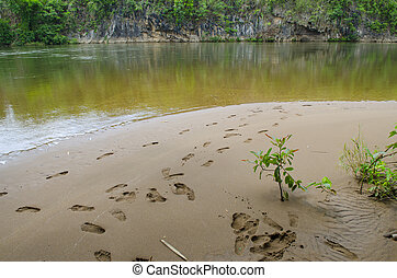 Close up of footprints on the beach sand
