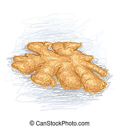 closeup illustration of a fresh ginger root.