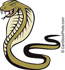 Illustration of a cobra viper snake serpent with tongue out attacking viewed from the side set on isolated white background done in cartoon style.