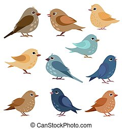 collection of funny birds for your design