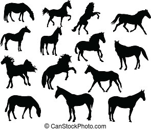 Collection of high quality horse silhouettes - vector