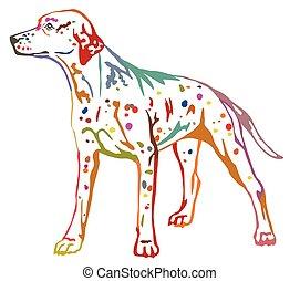 Colorful decorative standing portrait of dog Dalmatian vector illustration