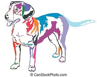 Colorful decorative standing portrait of Entlebucher Mountain Dog vector illustration