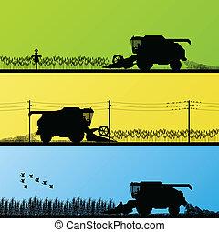 Combine harvesting crop in grain fields background vector illustration