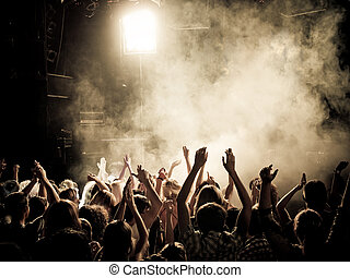Party people at a concert