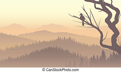 Vector panorama of wild coniferous forest in morning fog with bird on tree branch.