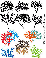 corals reefs, vector set
