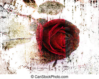corroded rose