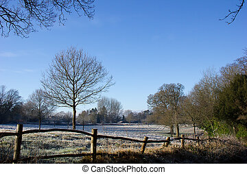 Countryside scene in winter with frost and sunshine
