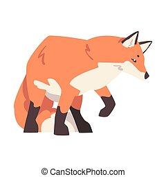 Creeping Fox, Beautiful Wild Predator Forest Animal Cartoon Vector Illustration