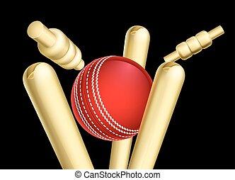 A cricket ball breaking wicket stumps sports illustration