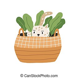 Cute and funny playful cat hiding in wicker basket with plant. Adorable kitty playing and lurking. Hand-drawn colored flat vector illustration isolated on white background