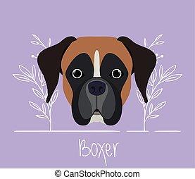 cute boxer dog pet head character