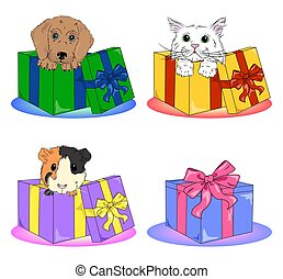 vector pets in boxes clipart icons set