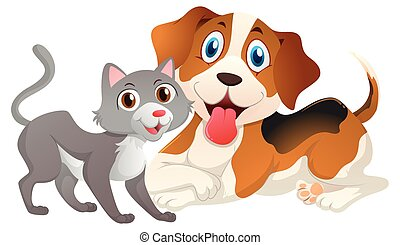 Cute cat and dog on white background