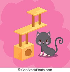 cute cat baby animal with toy