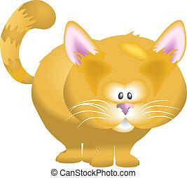 A cute kitty cat