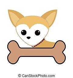 cute dog and bone